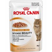 Royal Canin Jelly Gelatina Gele Cat Food