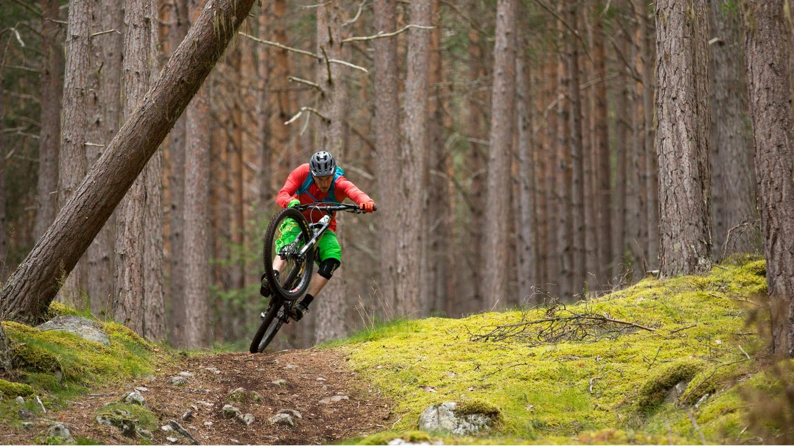Whistler mountain biking wallpaper