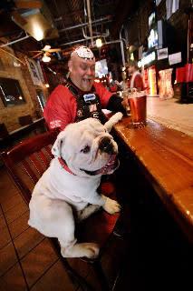 Dawg Mike Bar