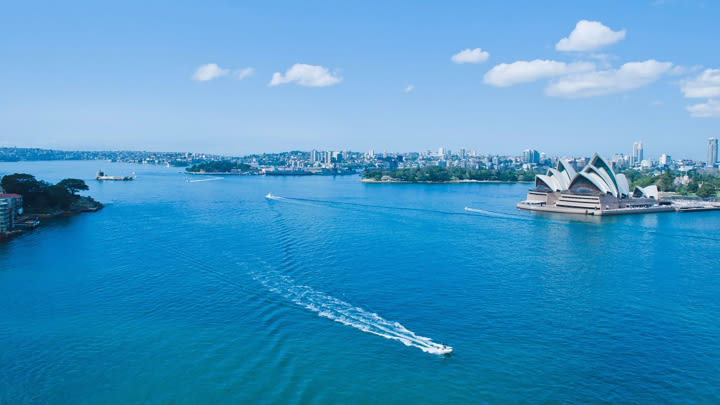Sydney Harbour from the top.