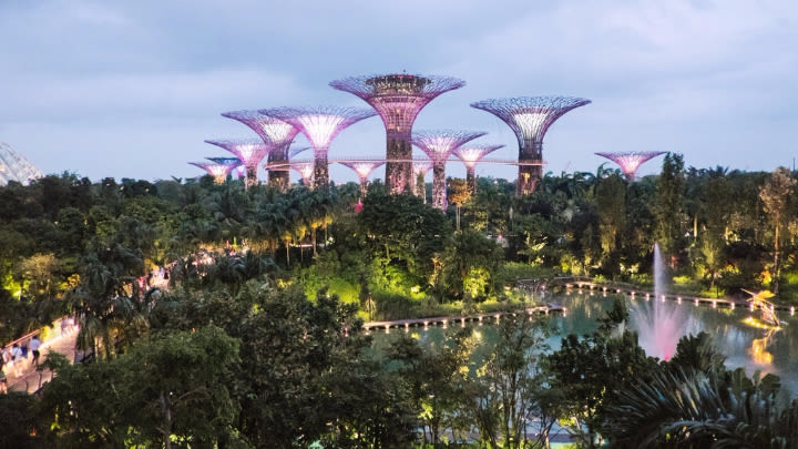 Gardens By The Bay in Singapore (Image uploaded to Reddit by u/mrschow).