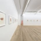 Michael Wang, Global Tone, 2013, installation view, Foxy Production, New York. Photo: Mark Woods