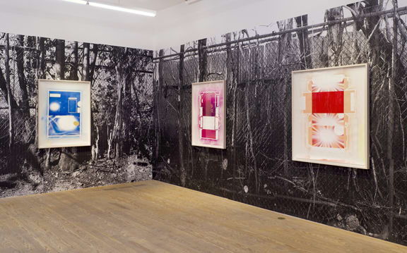 Ester Partegàs, 2010, installation view, Foxy Production, New York