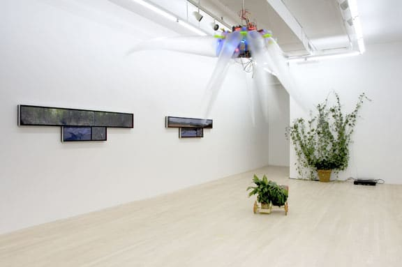 Networked Nature, 2007, installation views, Foxy Production, New York