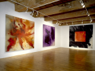 Installation View - The Johnny Paintings