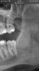 B8306843-7ec2-49d5-9682-d36214c70e59_vwm88z