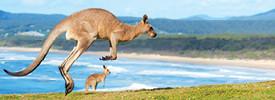 ISA Study Abroad in Sydney, Australia