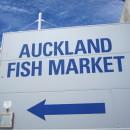 Australearn: Wellington - Victoria University of Wellington Photo