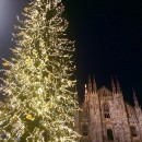 IES Abroad: Milan - IES Abroad in Milan Photo
