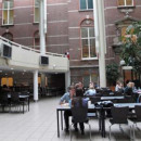 Study Abroad Reviews for IES Abroad: Amsterdam - Psychology & Sciences