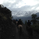 Study Abroad Reviews for WMU: Business and Culture in South America: Chile (Faculty-led)