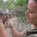 Study Abroad Reviews for Loop Abroad: Walkabout Wildlife Park - Veterinary Service in Australia Summer Program