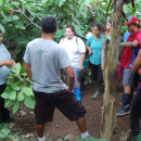 Study Abroad Reviews for Organization for Tropical Studies (OTS): Costa Rica - NAPIRE: Native American and Pacific Islander Research