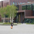 Study Abroad Reviews for SUNY New Paltz: Limerick - Study Abroad at University of Limerick