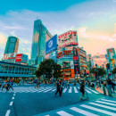 Study Abroad Reviews for International Business Seminars: Summer Japan 2021