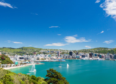 Study Abroad Reviews for API (Academic Programs International): Wellington - Victoria University of Wellington