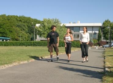 Study Abroad Reviews for INSA de Toulouse: Toulouse - Direct Enrollment & Exchange
