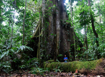 Study Abroad Reviews for Wildlands Studies: The Ecuador Project : Wildlife Ecosystems and Conservation