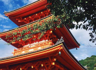 Study Abroad Reviews for The Experiment: Japan - Language and Cultural Traditions