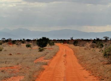 Study Abroad Reviews for University of Minnesota: Nairobi - Summer Engineering: The Power of Kenya
