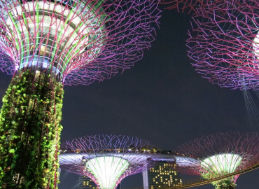 Study Abroad Reviews for The Education Abroad Network (TEAN): Singapore Internship Program