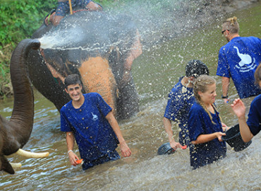 Study Abroad Reviews for CISabroad (Center for International Studies): Summer in Thailand