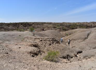 Study Abroad Reviews for Koobi Fora Field School: Nairobi - Study of Human Paleobiology in East Africa