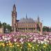 Photo of American University, Washington College of Law: Hague - Summer Law Program