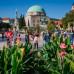 Photo of University of Pecs: Pécs - Direct Enrollment