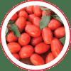 Tomate Híbrido AP529
