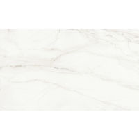 DOLMAGLIN60120FCP - Magnifica Slab - Lincoln Super White