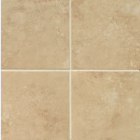 "Roma 6"" x 6"" x 3/8"" Floor and Wall Tile in Beige"