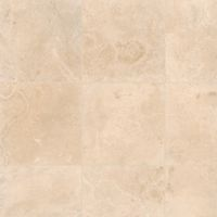"Aymaran Cream 18"" x 18"" x 3/8"" Floor and Wall Tile"