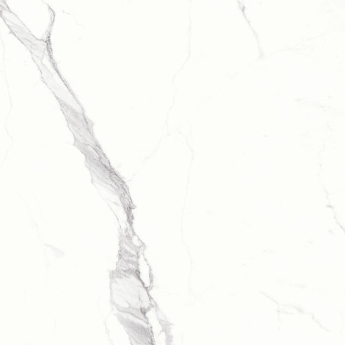 "Magnifica 60"" x 60"" Floor & Wall Tile in Statuario Super White"