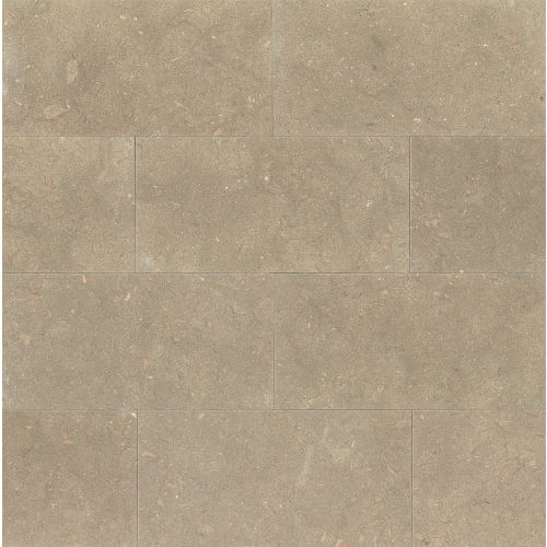 "Sea Grass 12"" x 24"" Floor & Wall Tile"