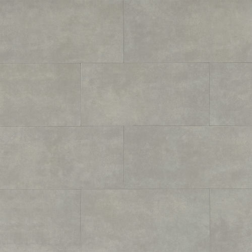 "Parkland 12"" x 24"" x 3/8"" Floor and Wall Tile in Arctic"