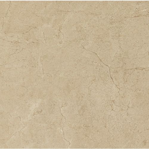 "Marfil 6"" x 6"" Floor & Wall Tile in Crema"