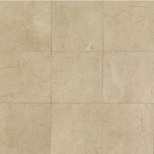 "Marfil 20"" x 20"" x 5/16"" Floor and Wall Tile in Crema"