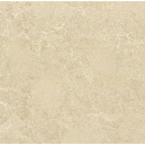 "Polished Porcelain 24"" x 24"" Floor & Wall Tile in Almond"