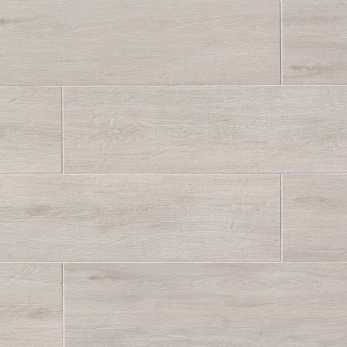 "Titus 8"" x 24"" Floor & Wall Tile in White"