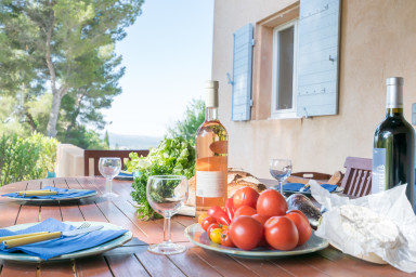 Villa Alpea - For a large family stay in Aix en Provence