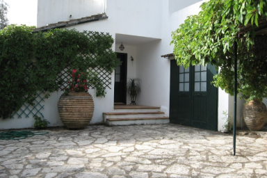 Charming Villa with Huge Land of 6000sqm in Sivota Bay