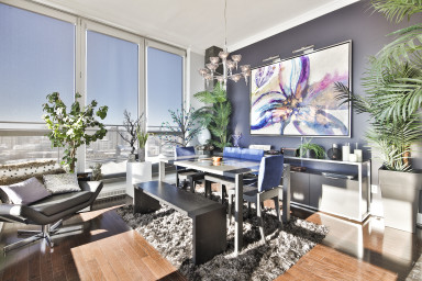 Bright and beautiful 1 bedroom penthouse in Solano - Old Port of Montreal