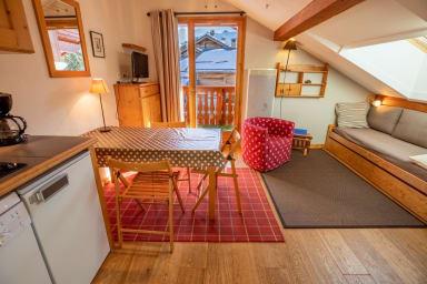Joli appartement 1 chambre skis aux pieds