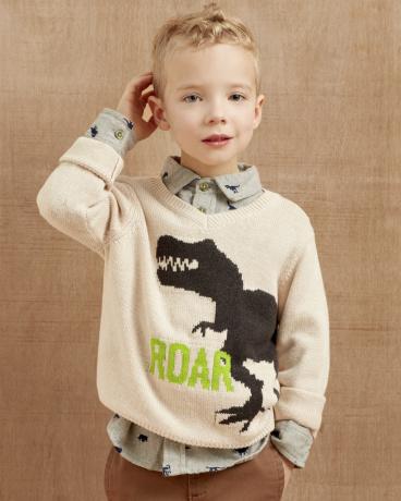 Roaring Dino V-Neck Sweater