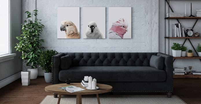 The Flock Triptych Set of 3