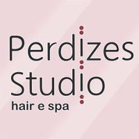 Perdizes Studio Hair e SPA SALÃO DE BELEZA