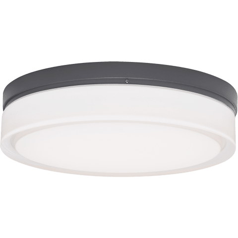 Cirque Large Outdoor Wall/Flush Mount Large charcoal Not Applicable INC