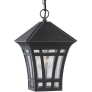 Herrington One Light Outdoor Pendant Black