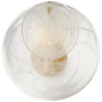 Loire Small Sconce in Gild with White Strie Glass